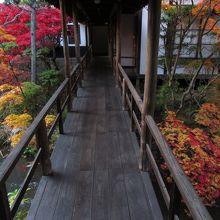 建物同士が渡り廊下で結ばれています。紅葉が綺麗でした。