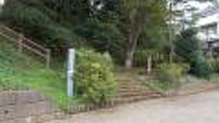 楚人冠公園