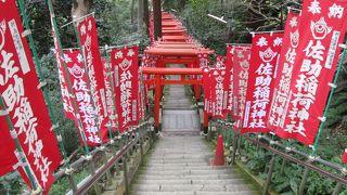 リスの鳴き声がこだまする佐助稲荷神社