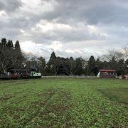 成田ゆめ牧場ファミリーオートキャンプ場にキャンプして行きました