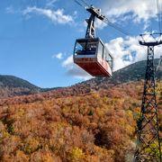 紅葉のじゅうたんの上を進む絶景のロープウェー