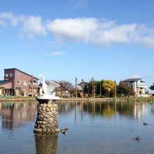 白鳥で有名な湖です。