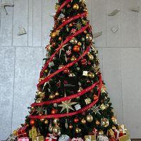 早くもクリスマスツリーが・・綺麗でした
