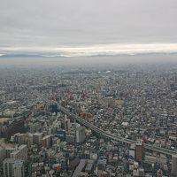 和歌山方面の景色でした