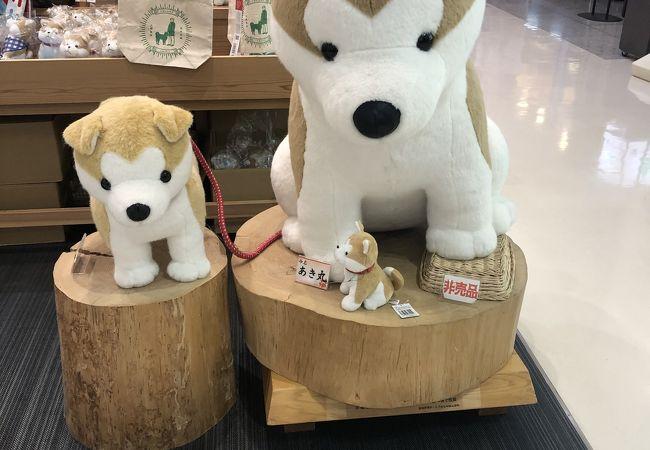 秋田空港内で一番大きなお店