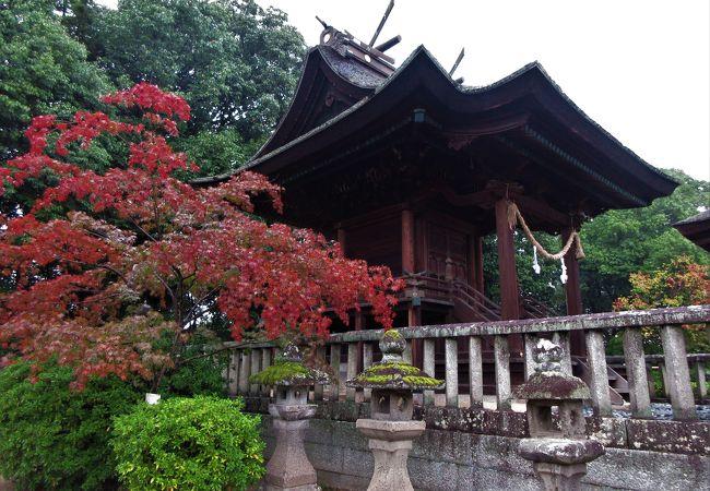 35mの鶴形山山頂に神社があり倉敷の街が見下ろせます。鶴亀の庭がありました。