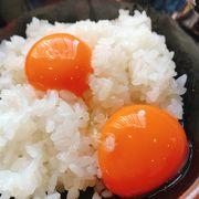 卵食べ放題!