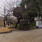 都会のオアシスといった感じの公園です。