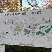 かながわ 丘の上の動物園 夢見ヶ崎動物公園 2020秋