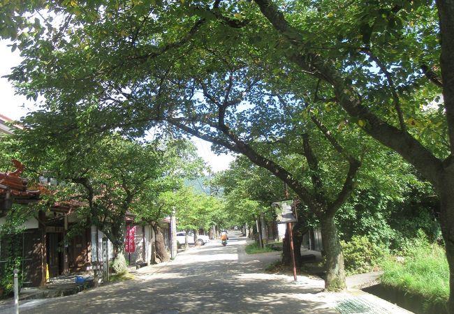新庄宿の街中にあります
