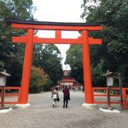 糺の森の先!参道が素晴らしい森の中に佇む世界文化遺産の神社