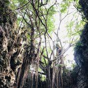 沖縄の谷を散策