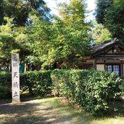 日本三景の絶景。様々な手段で景色を楽しみたい。