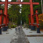 千年巨樹ある神社