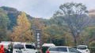 仙台市秋保大滝植物園