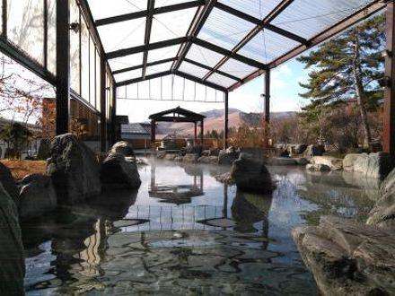 白樺リゾート 池の平ホテル 写真
