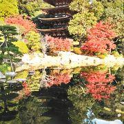 秋空に映える国宝五重塔