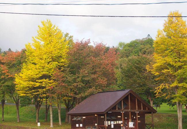 羊蹄山自然公園キャンプ場