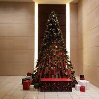 11月16日~クリスマスツリー展示。