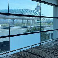 シンガポール チャンギ国際空港 (SIN)