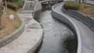 新盛緑川水岸廊道