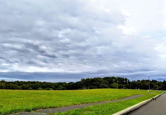 道立自然公園 野幌森林公園