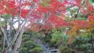 和歌山城にある紅葉のスポット