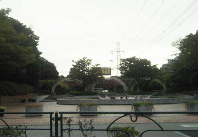 薔薇が綺麗な公園