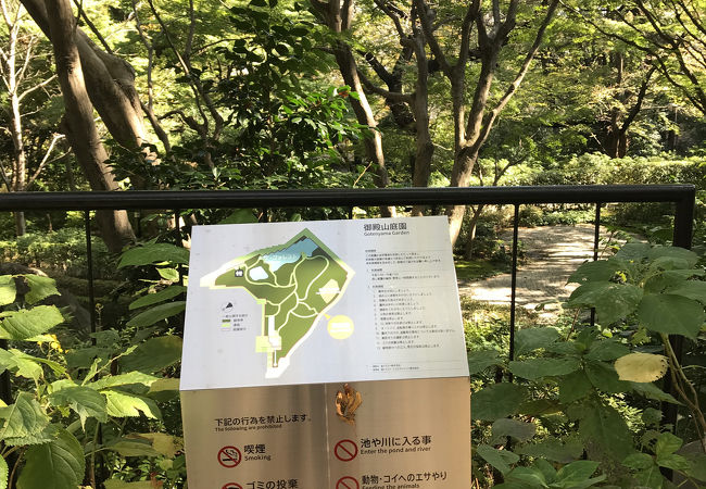 緑美しい庭園