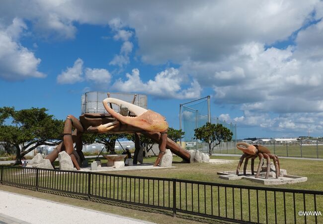 シオマネキ系と思われる巨大なカニの遊具