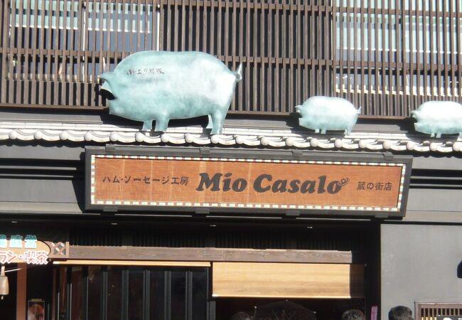 Mio Casalo 川越 蔵のまち店
