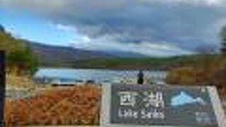 西湖 - てくてく橋