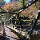 堂ケ島温泉(神奈川県箱根町)