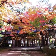 総門から山門までの紅葉のトンネルがすばらしい。