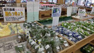 宮古島特有の野菜も楽しい