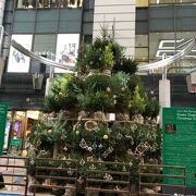 2020年の博多大丸のクリスマスツリーはジョンムーアさん企画「グリーングリーンクリスマスツリー」