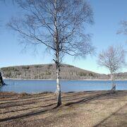 湖畔に整備された木道を歩くと、気持ちいいです。