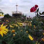 横浜らしい風景とバラが楽しめる公園