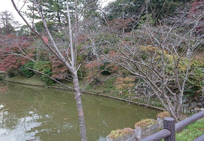 津駅近くの公園