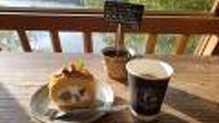 シェード ツリー コーヒー