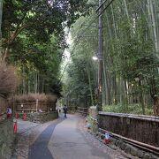 竹林に囲まれた静かな小径