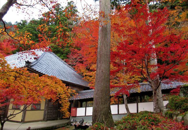 120段の石段を登りますが境内は平坦でした。紅葉がきれいです