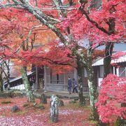 秋の紅葉で有名なお寺です。