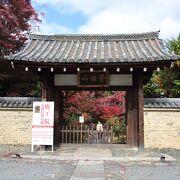 山門から総門に続く参道の紅葉が見事