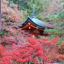 紅葉に囲まれた弁天堂