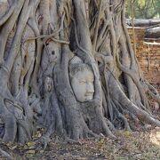 木の根が抱く仏頭が有名な世界遺産『古都アユタヤ』の構成遺産