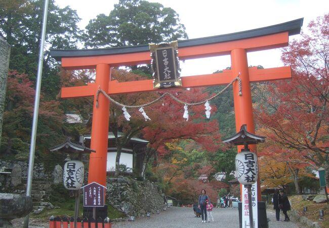 滋賀県坂本の紅葉の名所です。