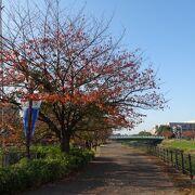 新横浜地区のコンパクトさを実感!