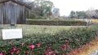 二之丸東庭園