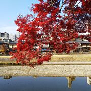 京都中心地を流れる川